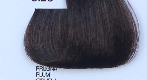 tinta naturale per capelli 5.26 Prugna